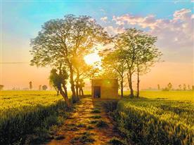 ਪਿੰਡ ਨੂੰ ਕਿੰਜ ਦੇਖਦਾ ਹੈ ਸ਼ਹਿਰੀ ਕੁਲੀਨ ਭਾਰਤ
